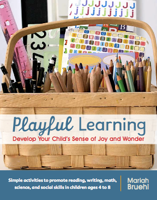 Playful Learning Book